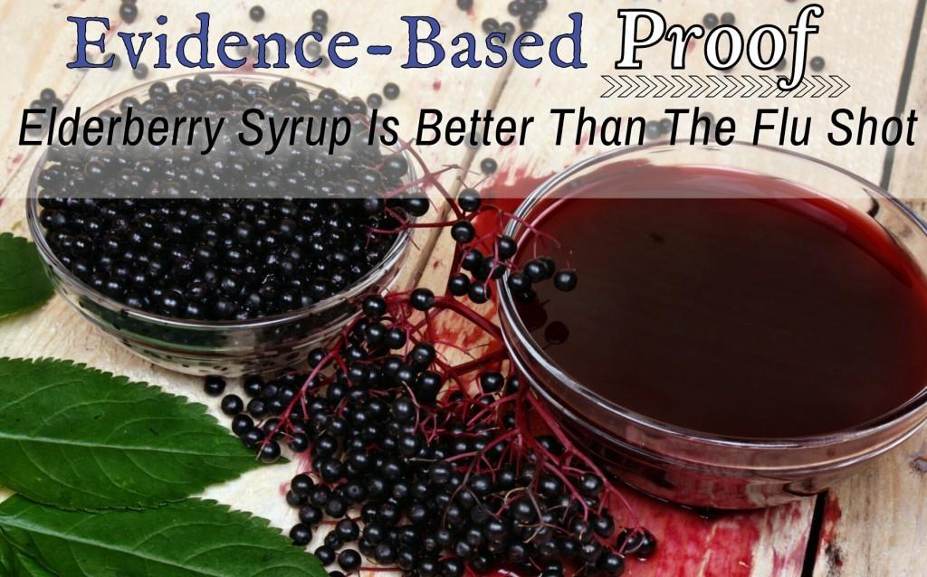 elderberry pic