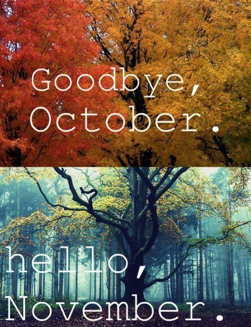 Goodbye Oct hello Nov